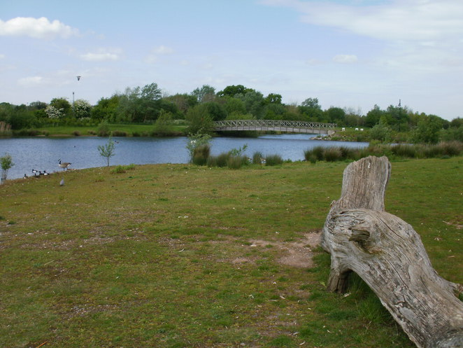 Barton Marina, Trent & Mersey Canal, wildlife, canal-boats, The Waterfront, Red Carpet Cinema