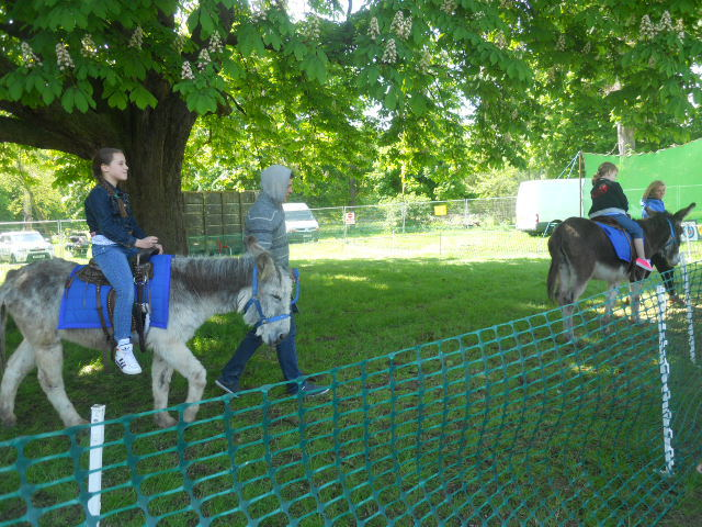 morden hall country show, oakleigh fairs, donkey rides