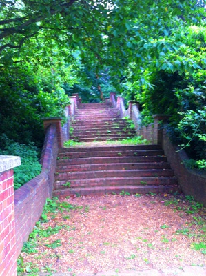 weald country park brentwood, brentwood deer, weald country park deer, feed deer, deer park, deer park essex, weald park lake, weald park tower stairs, old stair case, old stairs, brick stairs