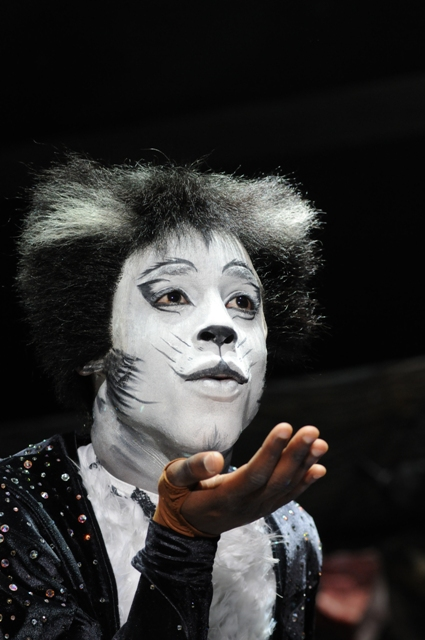 Cats, Birmingham Hippodrome, musical, UK Tour, Andrew Lloyd Webber, Whatson in Birmingham