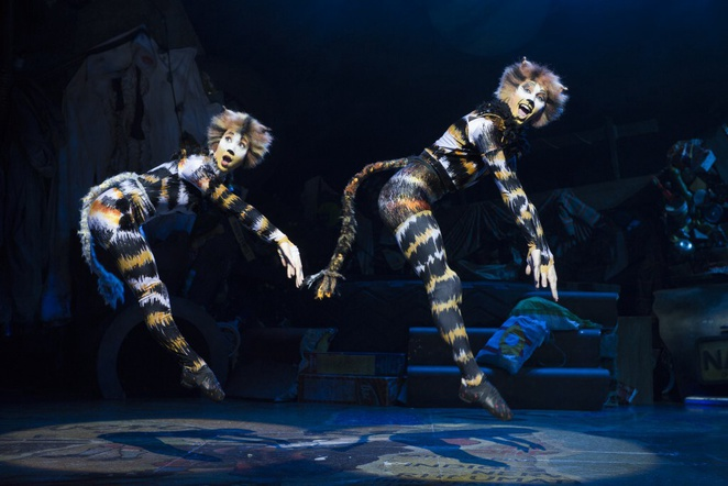 Cats, uk tour, Birmingham hippodrome, review