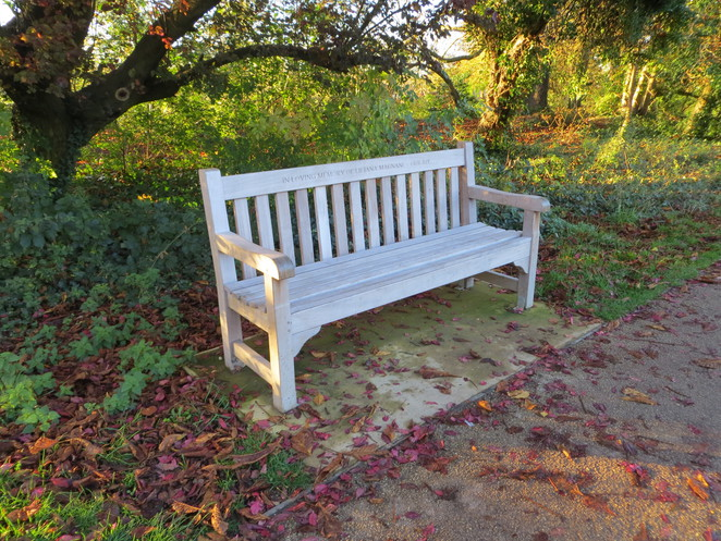 bench, thames, path, oxford