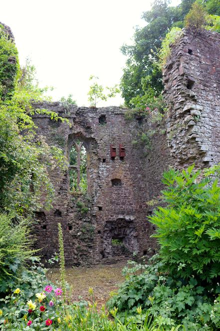 castle,tiverton,gttwa,devon,UK,england