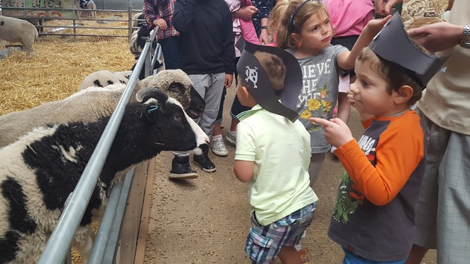 Odds Farm Park, Buckinghamshire, Wooburn, soft play, tractor rides, animal farm, playgrounds, kids shows, craft activities, best parks, best farms, outdoor play, wet weather play, English country farm