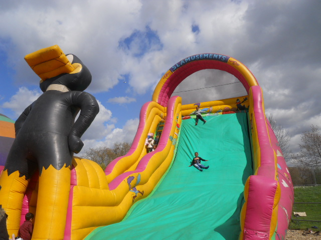 inflatable slide, daffy duck