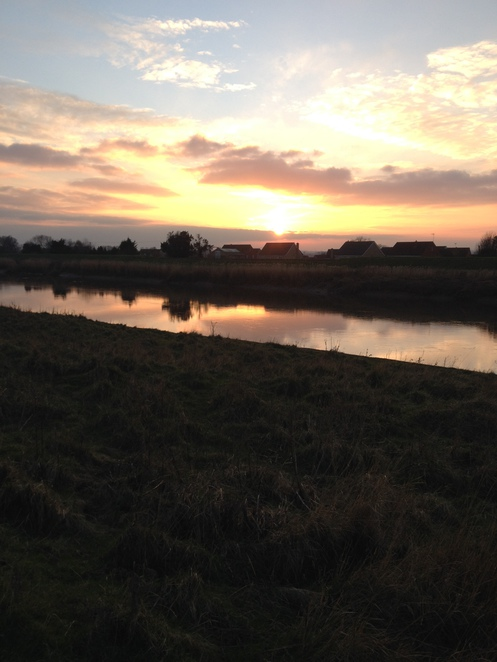 The fens, fenways, river Ouse, sunset, Norfolk, Downham market, walking, english countryside, rivers, water, fens, horses, animals,