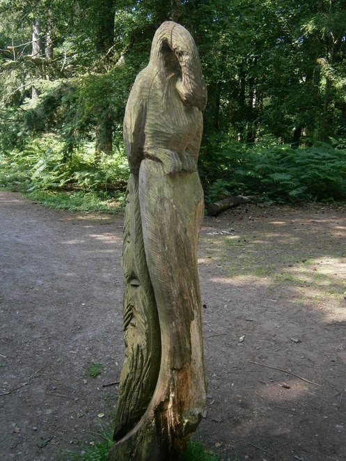 attingham park, national trust, shropshire, atcham, stately home, carved tree stump