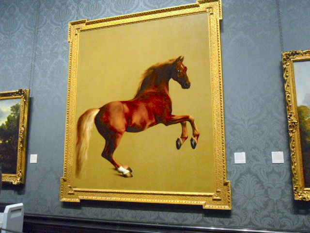 national gallery, whistlejacket