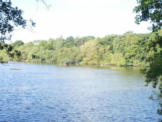 Fradley Pool, Fradley Nature Reserve