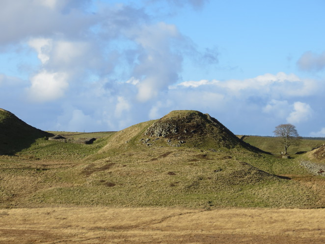 hadrian, wall, roman, sycamore, gap, mile castle