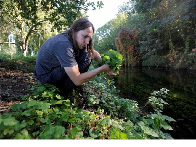 Taste of London, Miles Irving, foraging