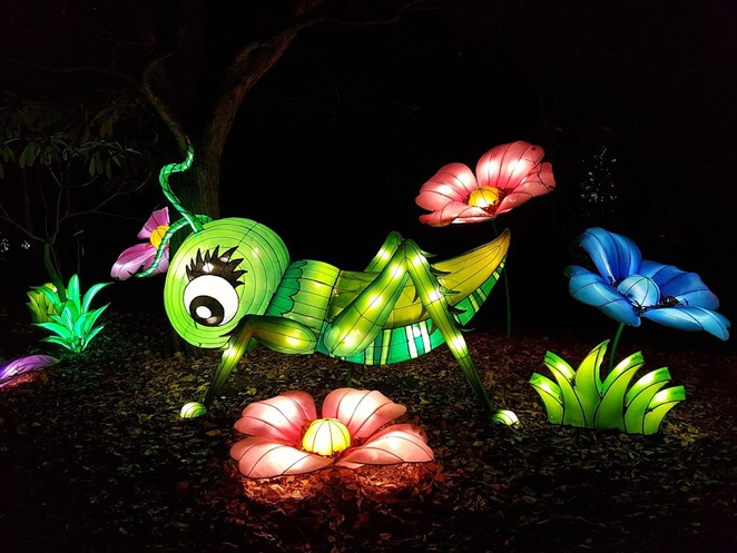 birmingham botanical gardens, magical lantern festival, lantern festival birmingham, christmas events in birmingham, what to do in birmingham, chinese lantern festival london, chinese lantern festival leeds