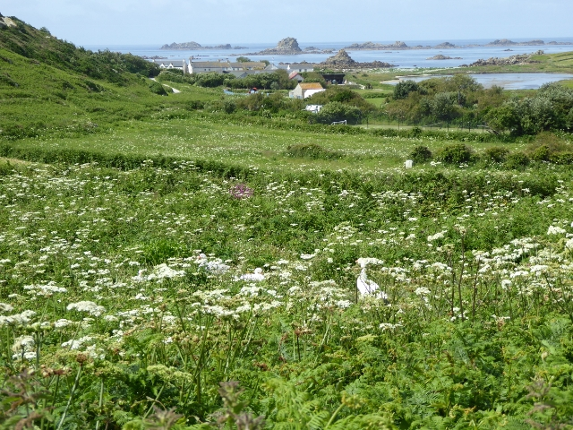 brhyer, isles of scilly, cornwall, hell bay