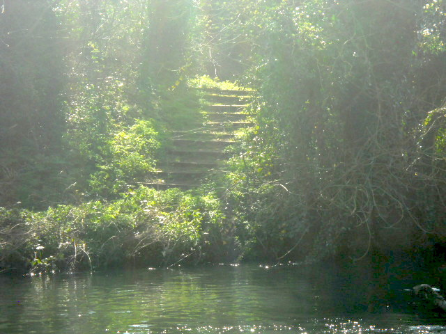 poulter park, river wandle, stairs, steps