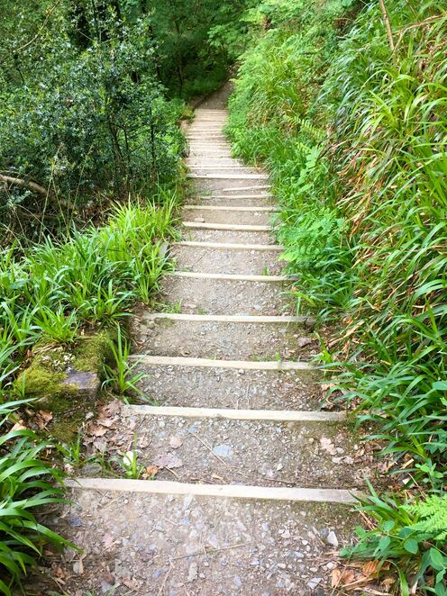 stairs,hiking tracks,devils cauldron,visit devon,river lyd