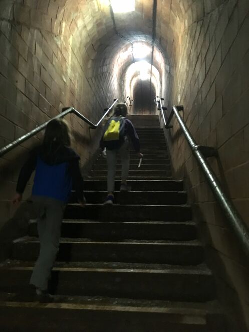 tunnel,free attractions,beach,seaside