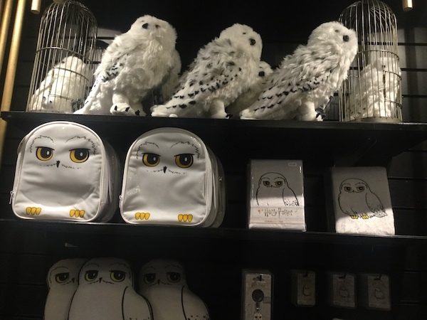 House of spells, Harry Potter, Hedwig
