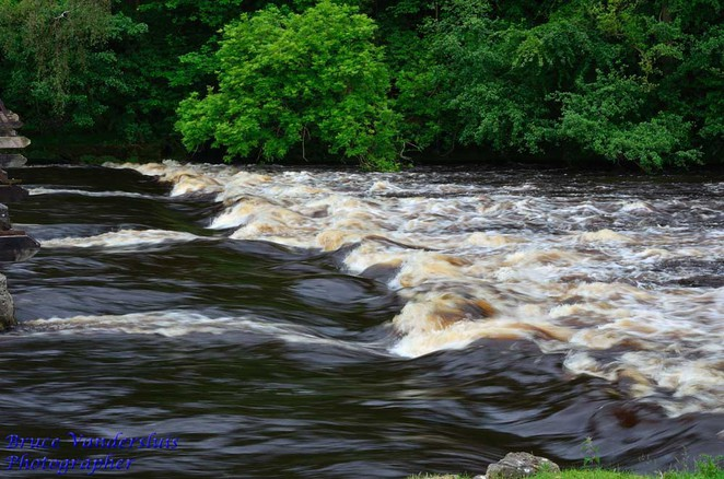 peat, water, stream, Bolton Abbey, Yorkshire, United Kingdom