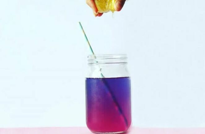 unicorn fizz ice tea recipe, bird and blend