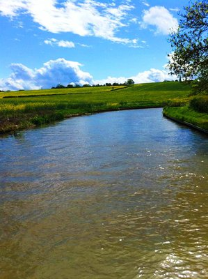 canal, narrow boat, narrow boat hire, canal narrow boat, canal boat, countryside