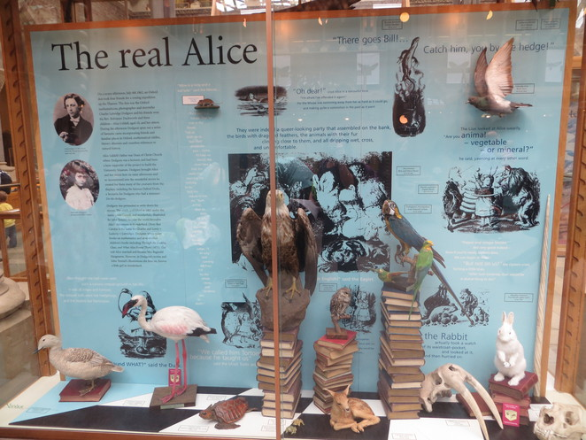alice, wonderland, oxford, natural, history, museum