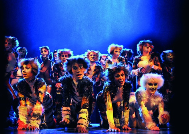 Cats, musical, Birmingham hippodrome, revamped version, review