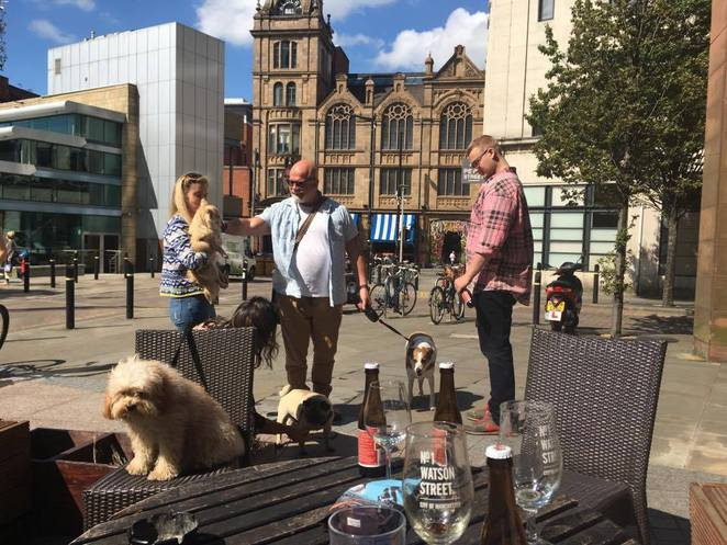 Bark Crawl, Liquorists, Manchester, Bar, Manchester, Dogs, dog-friendly, pubs