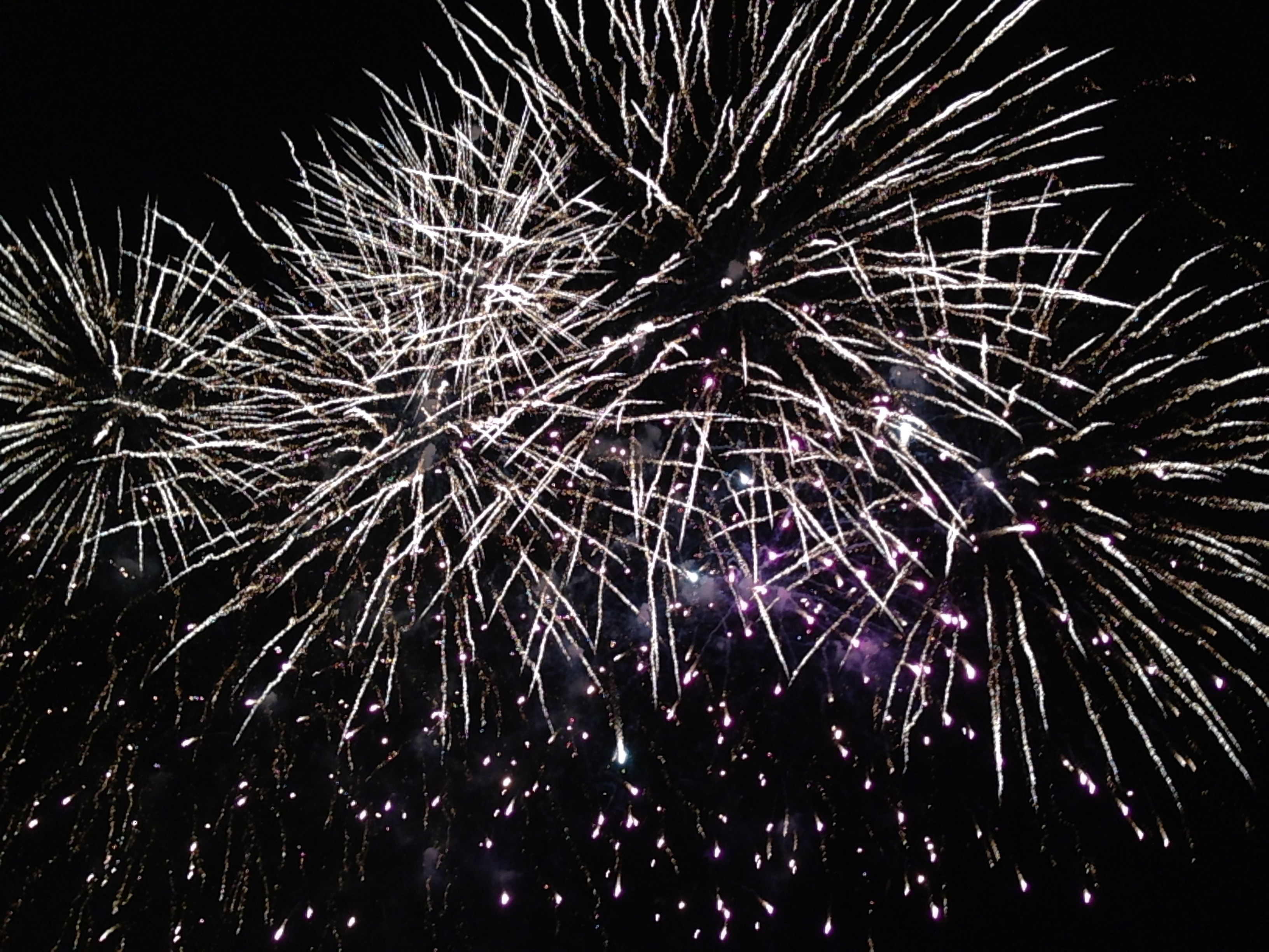 guy fawkes night Guy fawkes night definition: in the uk, the evening of 5 november, when models  of men, called guys, are burned on large fires outside and there are firework.