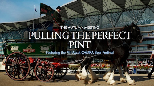 ascot, beer festival, horse and carriage