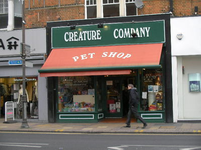 Creature company, pet shop