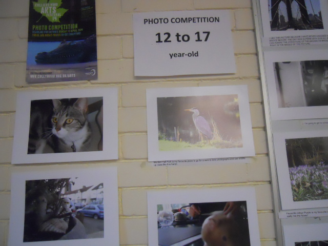 colliers wood community centre, cafe, collywood festival, photo entries