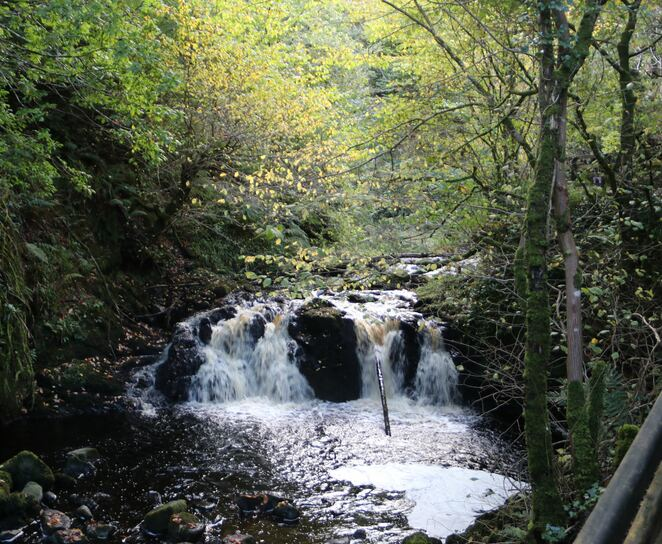 glenariff forest park,norther ireland,family day out,walking,free