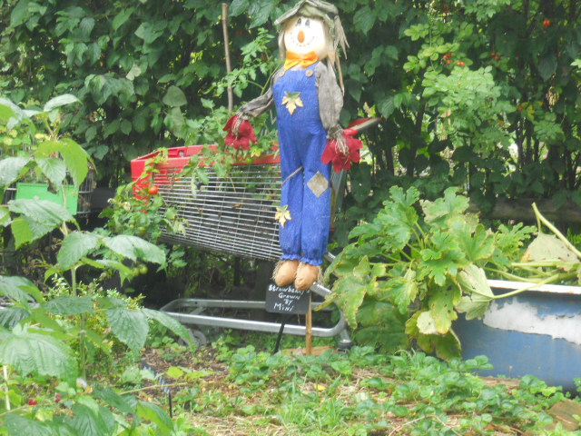 deen city farm, growing gardens community project, harvest festival, scarecrow