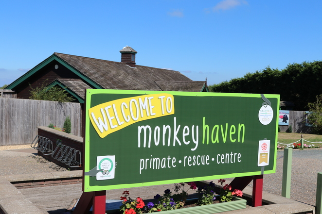 Monkey Haven Primate Rescue Centre