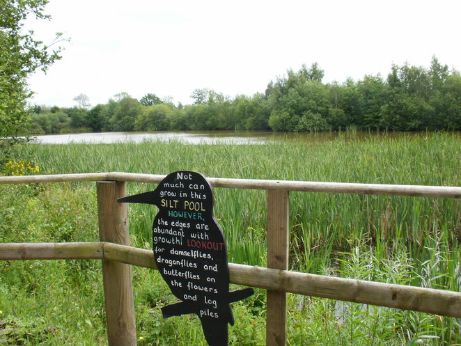 Middleton Lakes, RSPB, nature reserve, Tamworth, birdwatcher