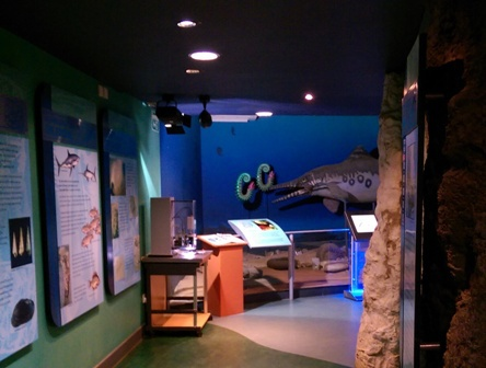 Fact-Filled Winding Corridor of Information and Interactive Displays