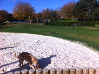 Cutteslowe Park, Zip Wire, Sandpit, Oxford
