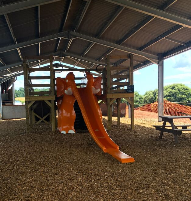 orange elephant,ice cream,cafe,garden,playground,kids,family,farm,slide,slippery dip