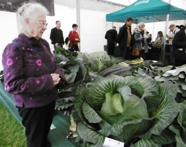 Malvern Autumn Show, Three Counties Showground, Gardening, Food, Giant Vegetables, Harvest