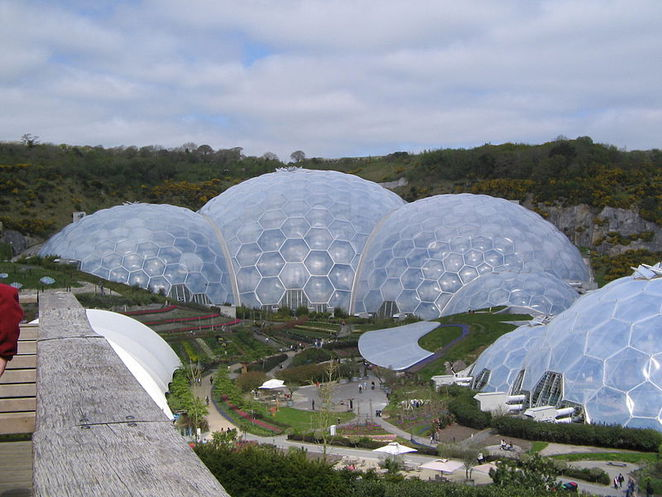 things to do in cornwall, christmas in cornwall, green activities, environmental activities