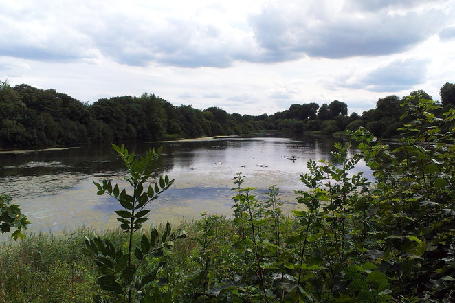 Leg O' Mutton Nature Reserve reservoir