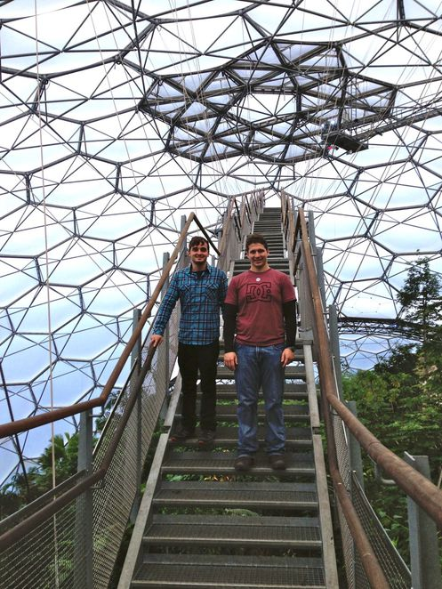 eden project, cornwall, education, plants, nature, forest, conservation, charity, biomes, domes, high, walkway