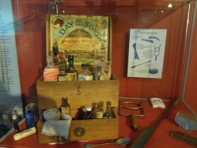 london canal museum, horse medicine