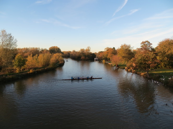 rowing, boats, thames, path, oxford, donnington