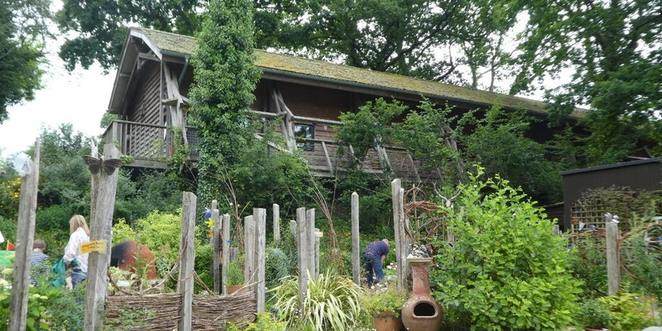 minstead study centre, living wild and true weekend retreat, personal improvement, self help, sustainability