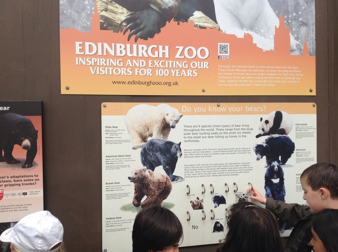 Edinburgh zoo, animal guide