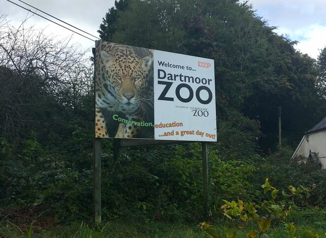 dartmoor zoo,we bought a zoo,conservation,animals