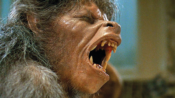 an american werewolf in london, bfi