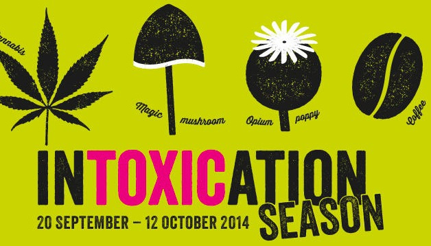 intoxication season, kew