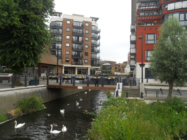 charter quay, kingston, royal walk about
